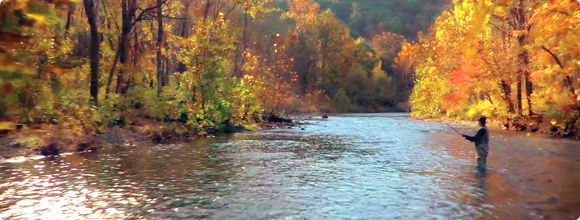 Flyfishing the Jackson RIver