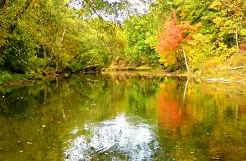 Marlons Creek