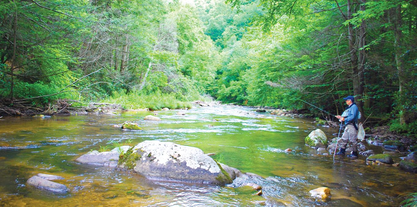 Flyfishing in Washington County