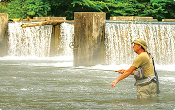 Fly fishing in Washington County