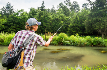 Mossy Creek Fly Fishing in Augusta County