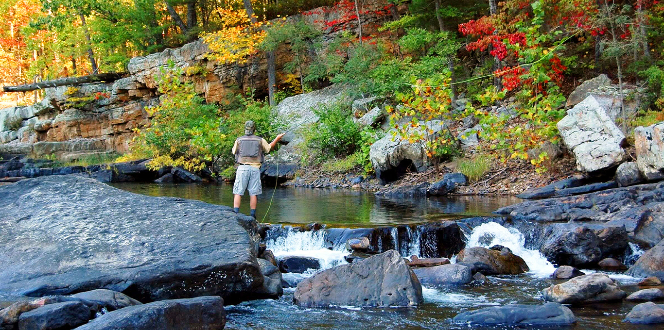 Fishing in Lexington
