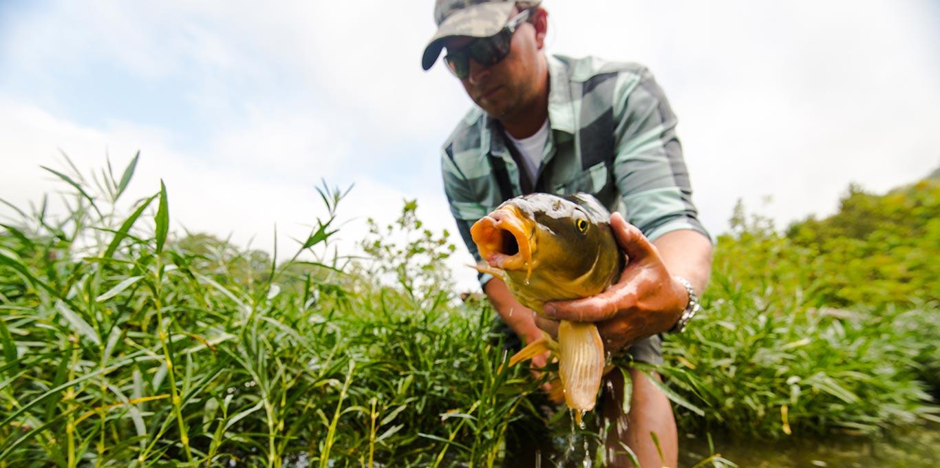Mossy Creek Fly Fishing in Augusta County Virginia