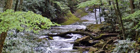 streams in Tazewell Va